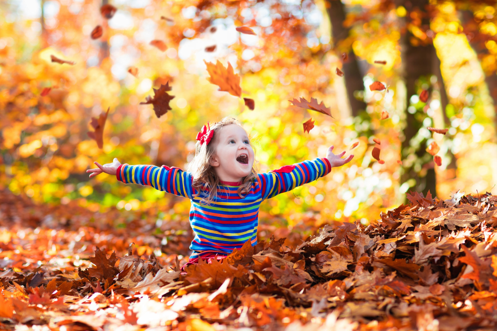 Favorite Autumn Walks in the Greater Puyallup Area 3
