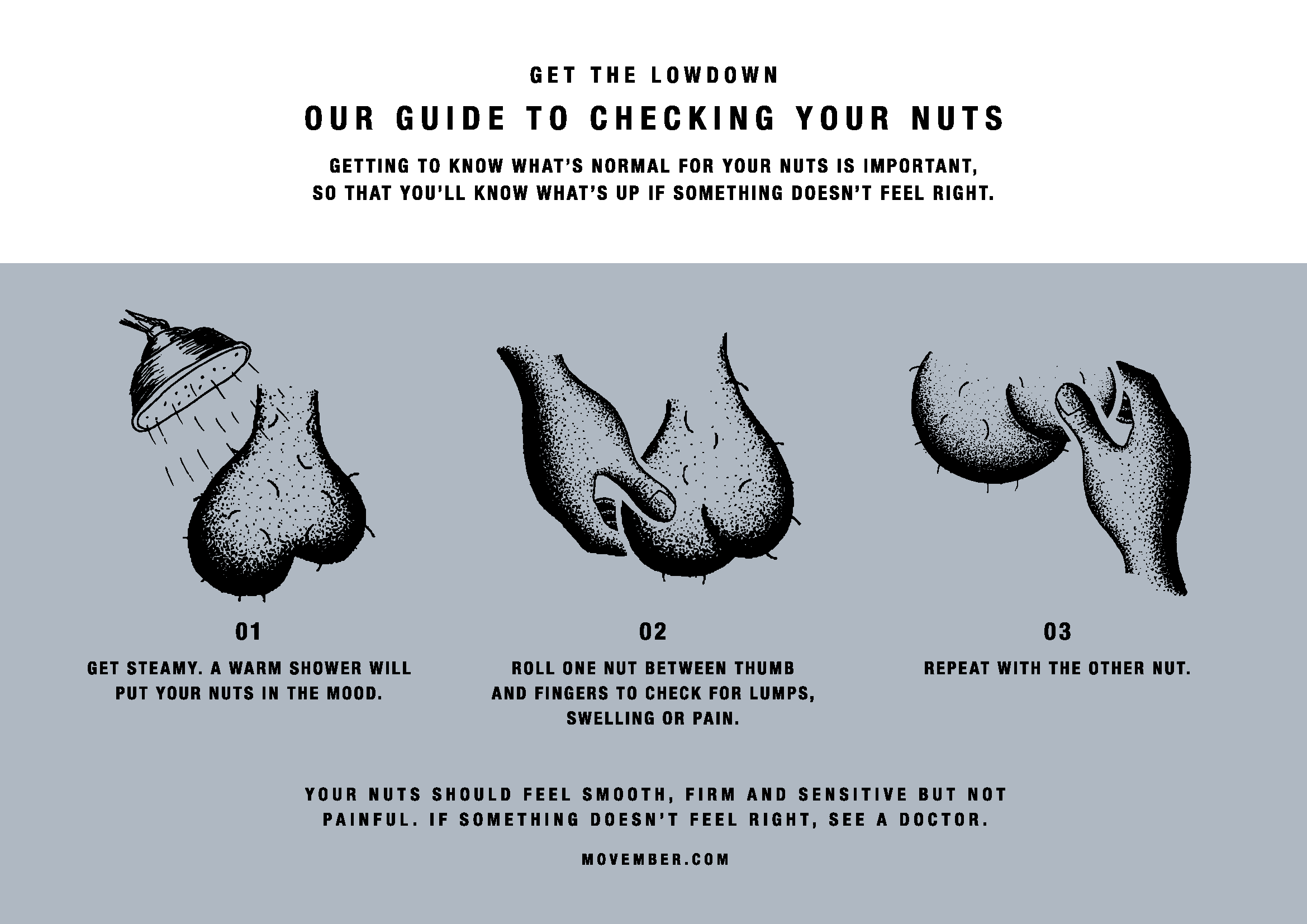 Movember: Prostate and Testicular Cancer - HorizonView Health